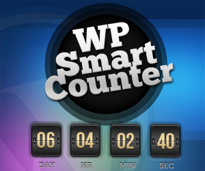 WP SmartCounter 300x250