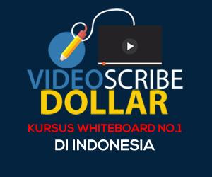 Video Scribe Dollar 300x250